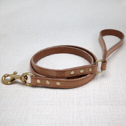 LIAISON DOG LEASH LARGE