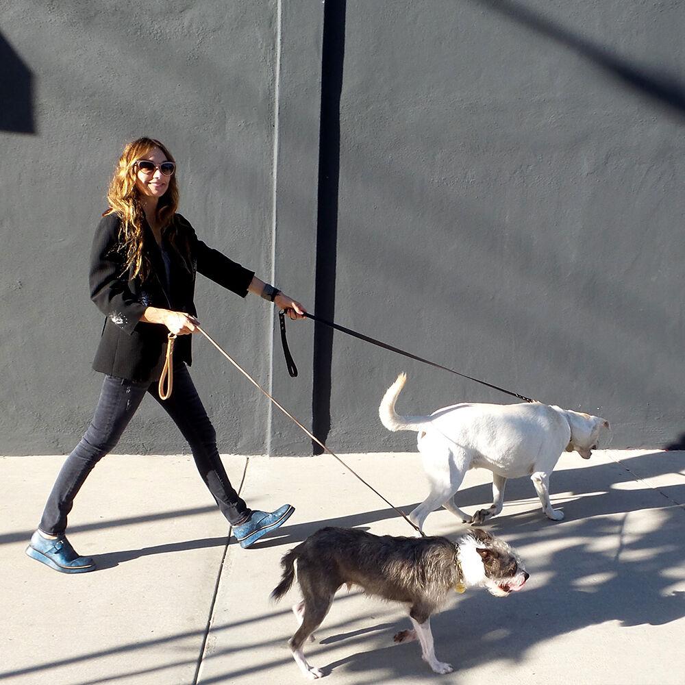 LIAISON DOG LEASH - SMALL